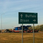 Buffalo North, Bison East
