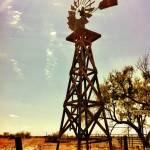 Windmill - Bud Matthews Switch - Texas Central Railway